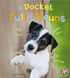 A Pocket Full of Nouns