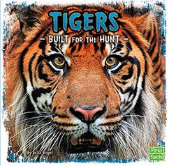 Tigers: Built for the Hunt