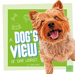 A Dog's View of the World