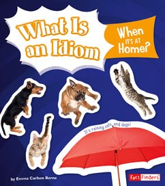 What Is an Idiom When It's at Home?