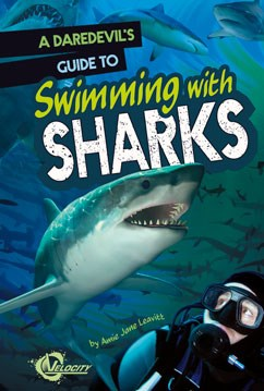 A Daredevil's Guide to Swimming with Sharks