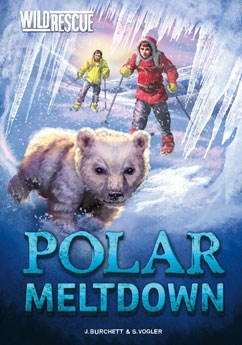 Polar Meltdown
