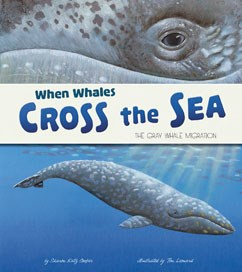 When Whales Cross the Sea: The Gray Whale Migration