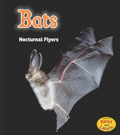 Bats: Nocturnal Flyers