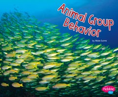 Animal Group Behavior