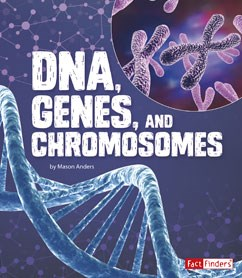 DNA, Genes, and Chromosomes