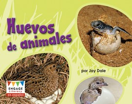 Huevos de animales (Animal Eggs)