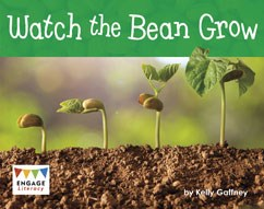 Watch the Bean Grow