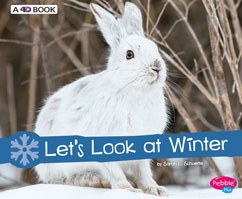 Let's Look at Winter: A 4D Book