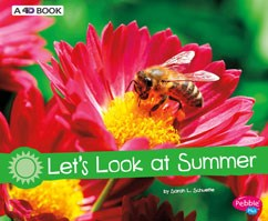 Let's Look at Summer: A 4D Book