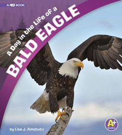 A Day in the Life of a Bald Eagle: A 4D Book