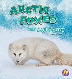 Arctic Foxes Are Awesome