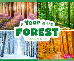 A Year in the Forest