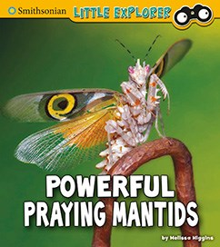 Powerful Praying Mantids: A 4D Book