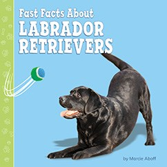 Fast Facts About Labrador Retrievers