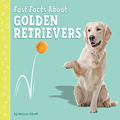 Fast Facts About Golden Retrievers