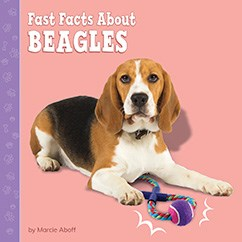 Fast Facts About Beagles