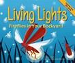 Living Lights: Fireflies in Your Backyard