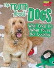 The Truth about Dogs: What Dogs Do When You're Not Looking