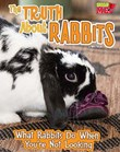 The Truth about Rabbits: What Rabbits Do When You're Not Looking