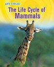 The Life Cycle of Mammals