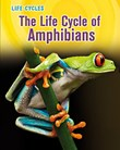 Life Cycle of Amphibians