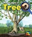 Tree: Look Inside
