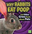 Why Rabbits Eat Poop and Other Gross Facts about Pets