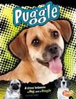 Puggle: A Cross Between a Pug and a Beagle