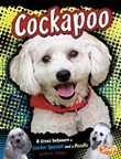 Cockapoo: A Cross Between a Cocker Spaniel and a Poodle
