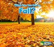 What Can You See in Fall?