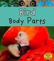 Bird Body Parts