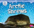 Arctic Shrews