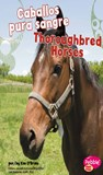 Caballos pura sangre/Thoroughbred Horses