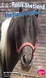 Ponis Shetland/Shetland Ponies
