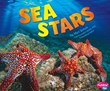 Sea Stars