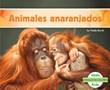 Animales anaranjados