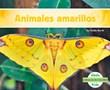 Animales amarillos