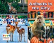 Animals in the City