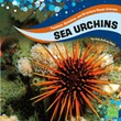 Sea Urchins