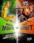 Praying Mantis vs. Giant Hornet: Battle of the Powerful Predators
