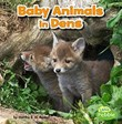 Baby Animals in Dens