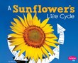 A Sunflower's Life Cycle