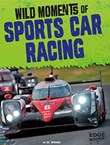 Wild Moments of Sports Car Racing