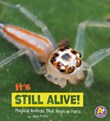 It's Still Alive!: Magical AnimalsThat Regrow Parts