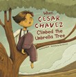 When Cesar Chavez Climbed the Umbrella Tree