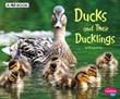 Ducks and Their Ducklings: A 4D Book