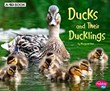 Ducks and Their Ducklings: A 4D Book