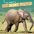 All About Baby African Elephants