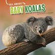 All About Baby Koalas